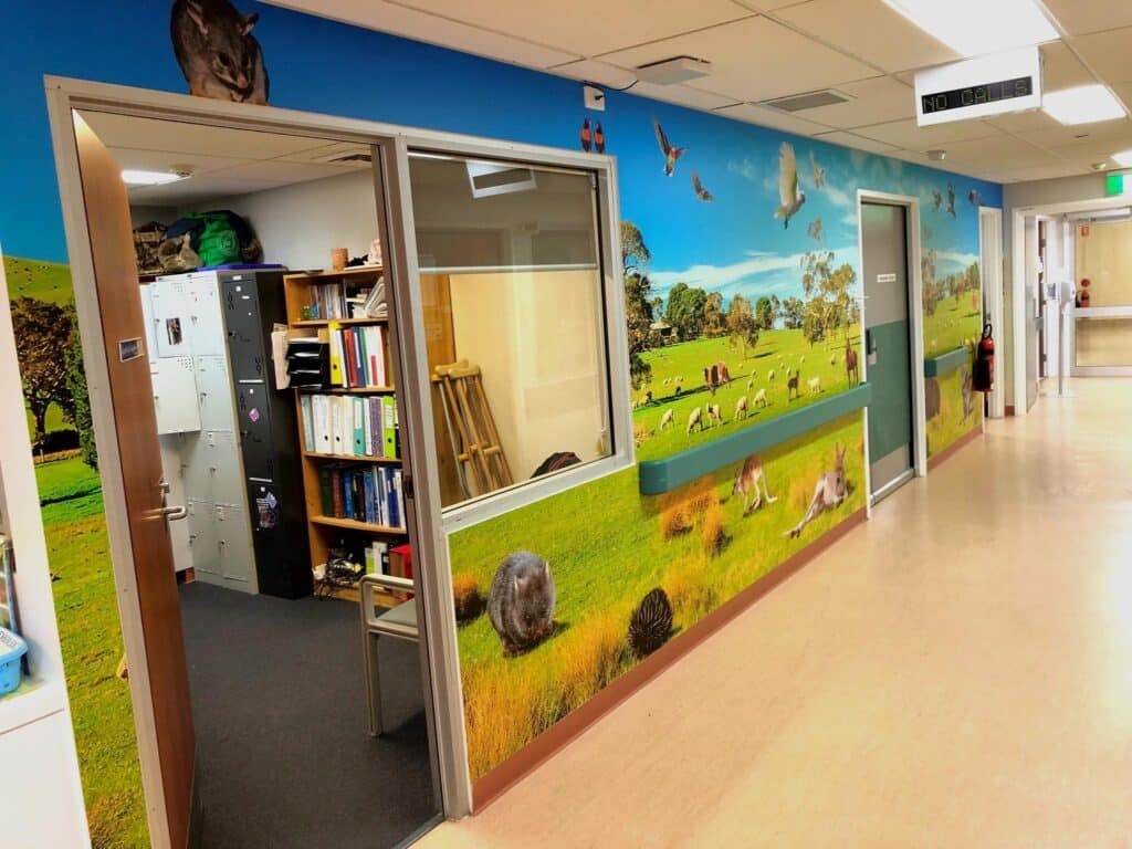Australian Animal Wall Graphics Newcastle - Big Colour